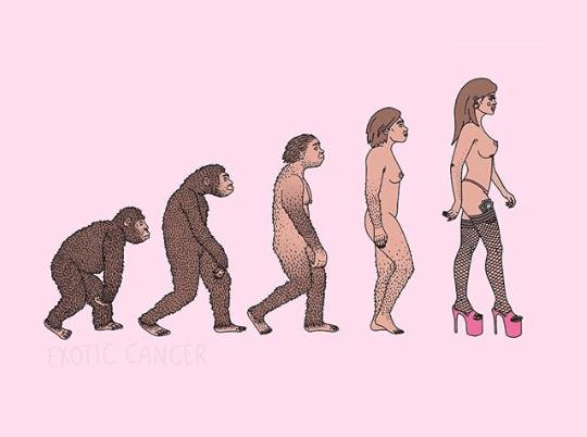 evoluzione-exoticcancer.png
